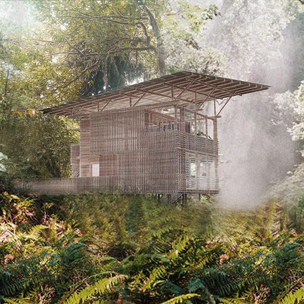 Costa Rica Jungle Residence Studiostigsgaard