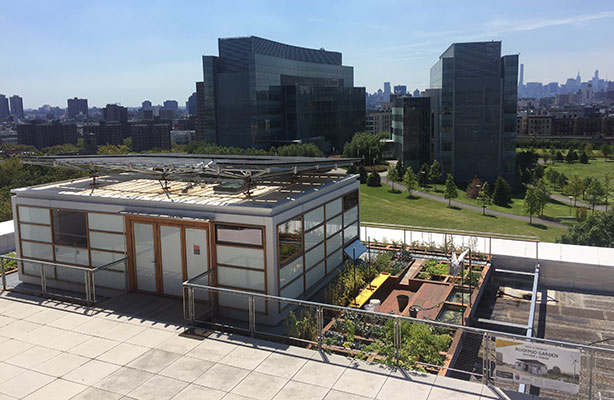 Aerial view - Solar RoofPod and Urban Farm with CCNY South Campus in background, summer 2016
