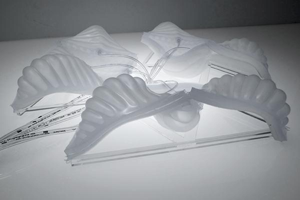 Ssa Web Fm Project 07