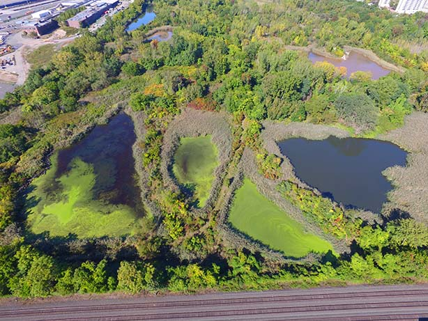photo: aerial view of Mariners Marsh Park