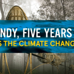 graphic: Sandy, Five Years On