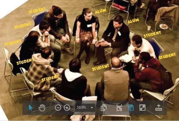 speed mentoring group