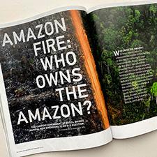 Seavitt Amazon Lam 2020 225