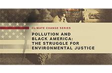 Rickenbacker Climate Justice Widget