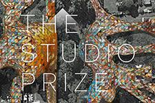 Studio Prize Widget