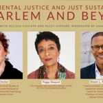 Environmental Justice Web
